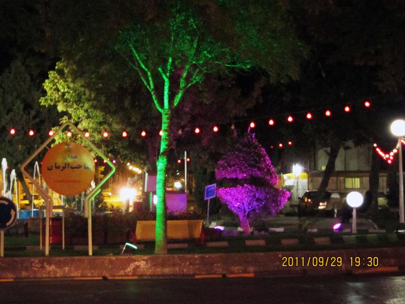 استفاده نامناسب از نور های ارغوانی و سبز خالص در نورپردازی درختان در فضای سبز
